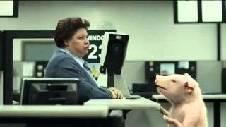 Video GEICO Commercial - DMV Pig's Identification Photo - AdsYo! download MP3, 3GP, MP4, WEBM, AVI, FLV Desember 2017