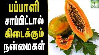 Papaya leaf Health Benefits - Tamil Health & Beauty Tips