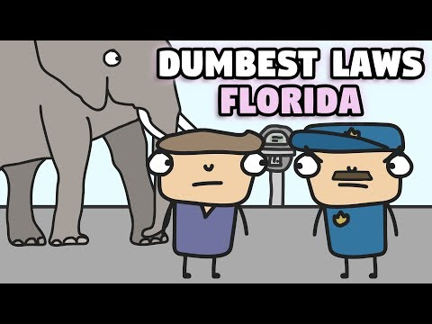 New bill could close loopholes in Florida's gun laws from YouTube · Duration:  2 minutes 4 seconds