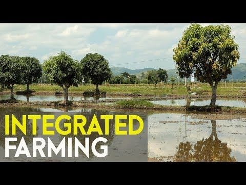 Integrated farming success : Agri business ideas in the Phil