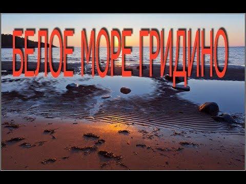 Белое море Гридино ч.1