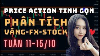 ✅ Phân Tích VÀNG-FOREX-STOCK Tuần 11-15/10 Theo Phương Pháp Price Action Tinh Gọn | TraderViet