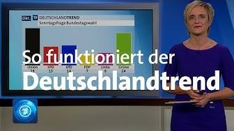 Sonntagsfrage & Co: So funktioniert der Deutschlandtrend
