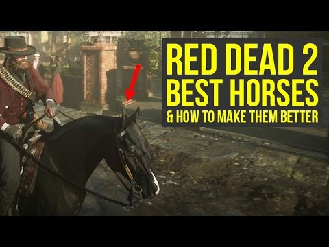 red-dead-redemption-2-best-horses-in-the-game-&-how-to-make-them-even-better-(rdr2-best-horses)
