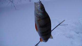 Зимняя рыбалка. Подготовка удилища к зиме