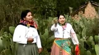 AMORES SOBRE FLORES: Carnavales de Pampas, Tipaki