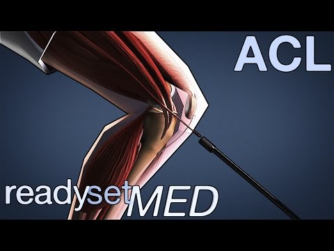 What is a Hamstrings Autograft Surgery? - ACL Series