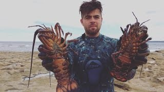 Harvesting Sydney Lobsters - Part 1