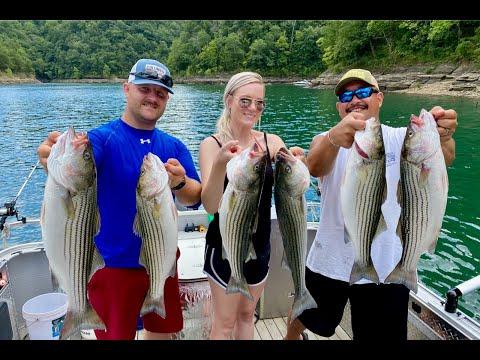 Striper Fishing Lake Cumberland KY: Fish On Guide Service