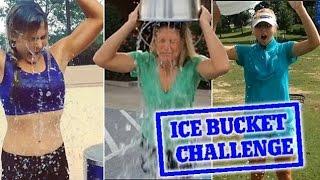 Ice Bucket Challenge от Шедевры Современности