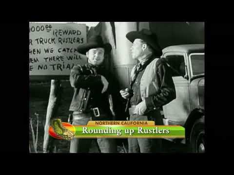 Cattle Rustling - America's Heartland