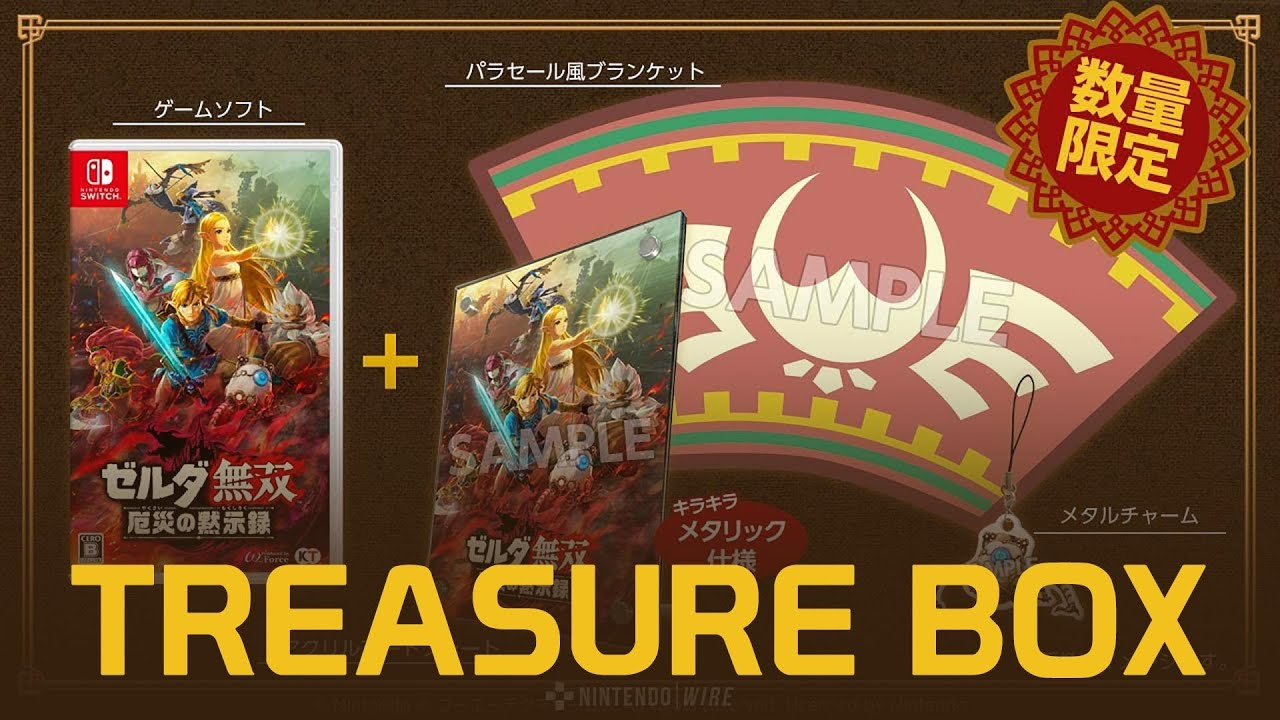 Hyrule Warriors Age Of Calamity Treasure Box Offers Paraglider Blanket And More News Break
