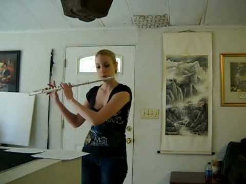 Song of the Caged Bird- Lindsey Stirling (Flute cover)