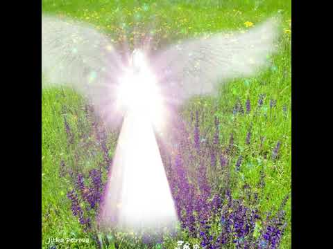 Engel Für Verzeihung, Angel Of Forgiveness