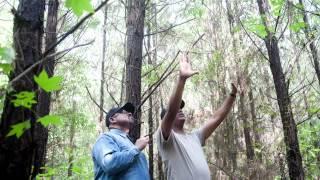 Landowner Forest Management Plan