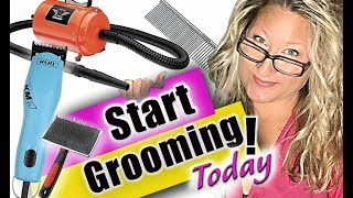 Get Started as a Pet Groomer-Tools You Need