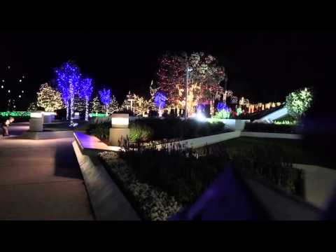 Time-lapse: Christmas visitors at San Diego Temple of LDS