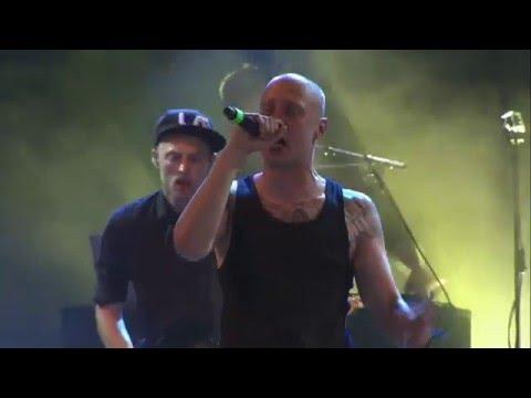 Pede B & DJ Noize - Live På Roskilde Festval 2015 (Samlet)