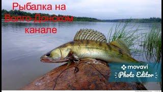 Рыбалка на Волго Донском канале Атака бычков Ловля рыбы руками