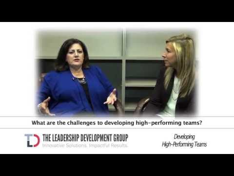 TLD GROUP CASE STUDY: Developing High Performing Teams