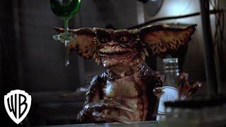 Gremlins 2:  The New Batch -- Brain Hormone