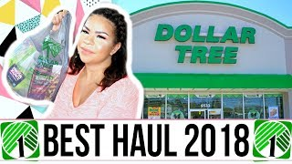 DOLLAR TREE HAUL | NEVER SEEN BEFORE DOLLAR STORE FIND + MORE! Sensational Finds