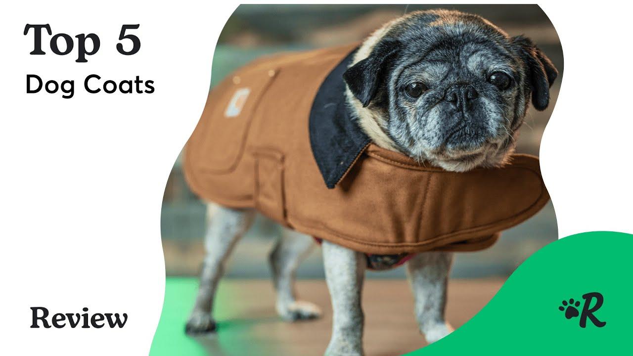 barbour reflective dog coat
