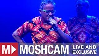 Devo - Gut Feeling/Slap Your Mammy | Live in Santa Ana | Moshcam