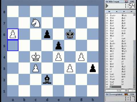 Blitz Chess #1455 with  Comments Siclian Kan vs BillyCorgan IM Michiel de Jong