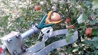 Automatic fruit picker demonstration by FF Robotics : IFTA 2017