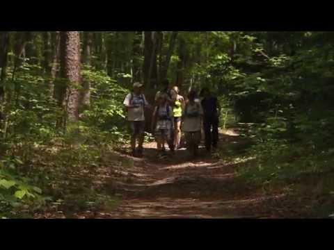 Wild SideTV-Hike 'Em All