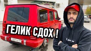 ГЕЛИК ГУСЕЙНА - СДОХ !