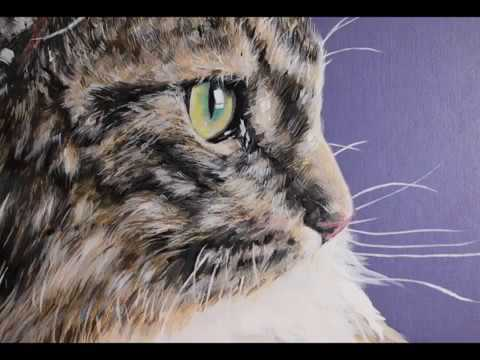 How I paint a Norwegian Forest Cat