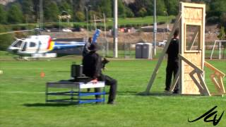 Fastest Dog -  2014 Canadian Police Canine Championship -  Apple Bowl Kelowna - Youtube