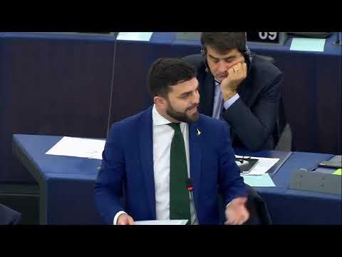 🔴 Intervento Del Presidente Del Gruppo ID On. Marco Zanni Al Parlamento Europeo Del 27/11/2019.
