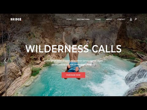 How Do I Create A Travel Agency Or Tour Booking Website In WordPress?