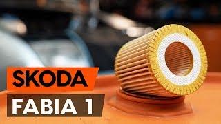 Comment remplacer filtre à huile et huile moteur sur SKODA FABIA 1 (6Y5) [TUTORIEL AUTODOC]