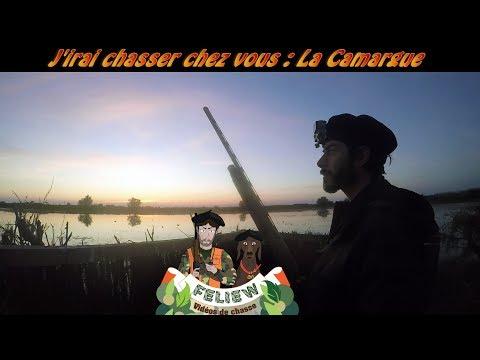 J'irai chasser chez vous: la Camargue, chasse au canard et à la bécassine