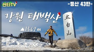 등산 태백산, '대한민국 허리' 초보도 …