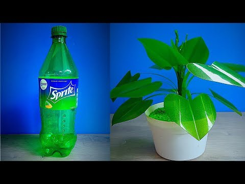 HOW TO MAKE A TREE PLASTIC FLOWER DECORATION FROM A USED BOTTLE || BEAUTIFUL ROOM DECORATION