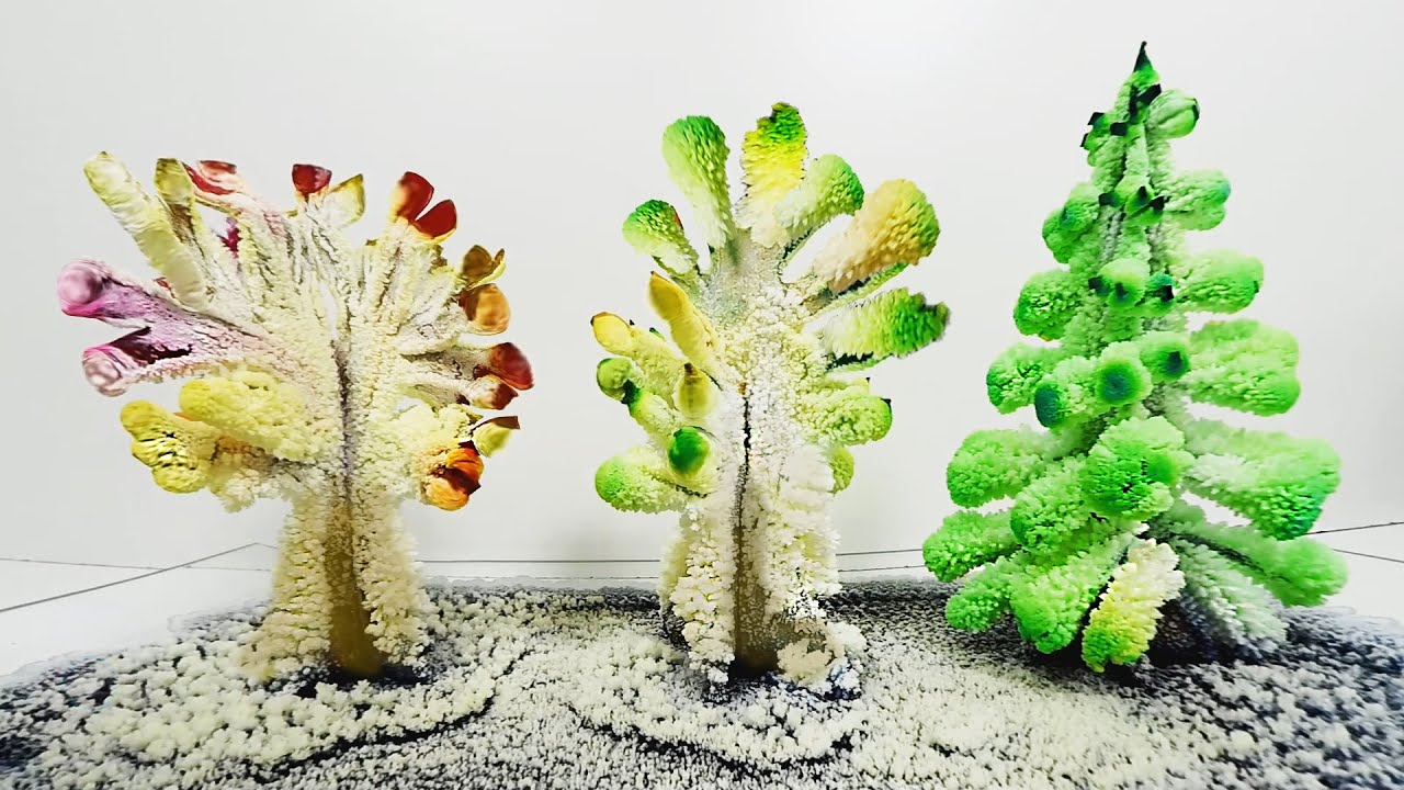 Arboles de cristales caseros diy magic crystal garden - Papel para cristales ...