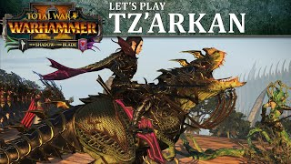 Malus Darkblade Let's Play | Total War: WARHAMMER 2 - The Shadow & The Blade