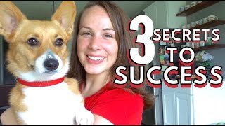 3 Secrets to Success I learned from These YouTubers: Cathrin Manning, Kelly Stamps, and PewdiePie