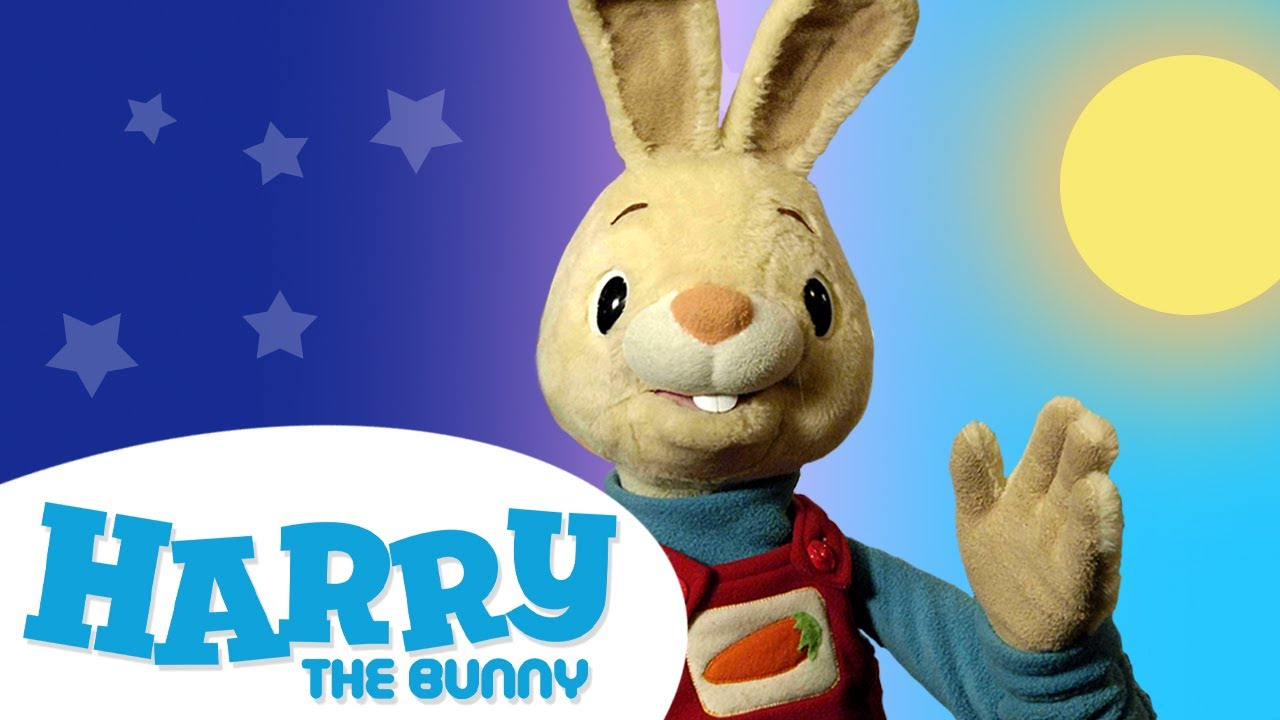 Harry's Morning & Nighttime Routine | Day and Bedtime for Children | Harry the Bunny Videos for Kids