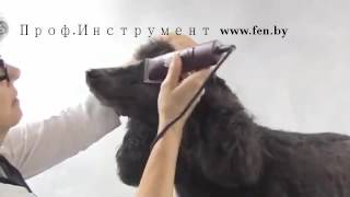 Машинка для стрижки собак кошек Andis AGC Super 2-Speed 23145