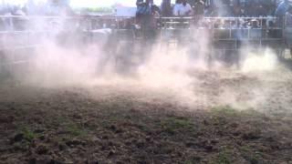 Feria tlaunilolpan 26/07/2015