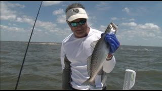Top Water Charters on Castin