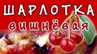Рецепт шарлотки с вишней ★ пирог шарлотка
