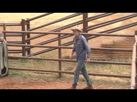 Outback Cattle Yard