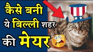 कैसे बनी एक बिल्ली पूरे शहर की मेयर 😲 Amazing Facts #shorts